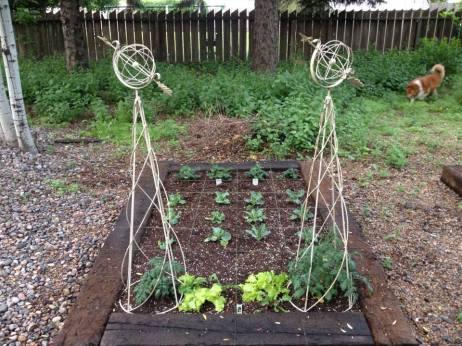 Garden01today