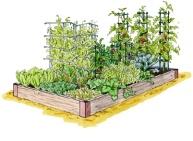 Garden02 Inspiration